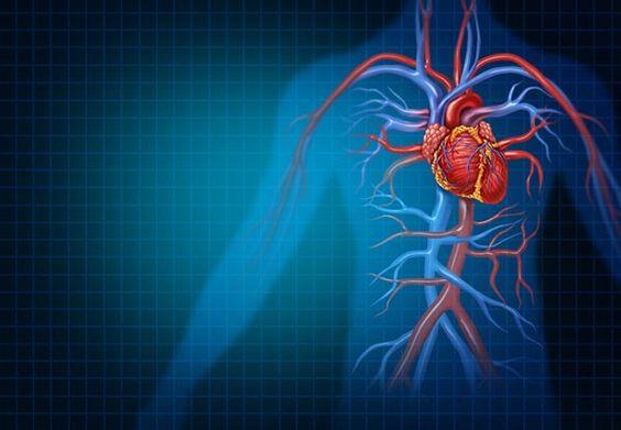 poszter a magas vérnyomás témában hatékony étrend magas vérnyomás esetén