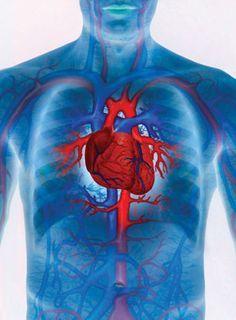 magas vérnyomás rheumatoid arthritis
