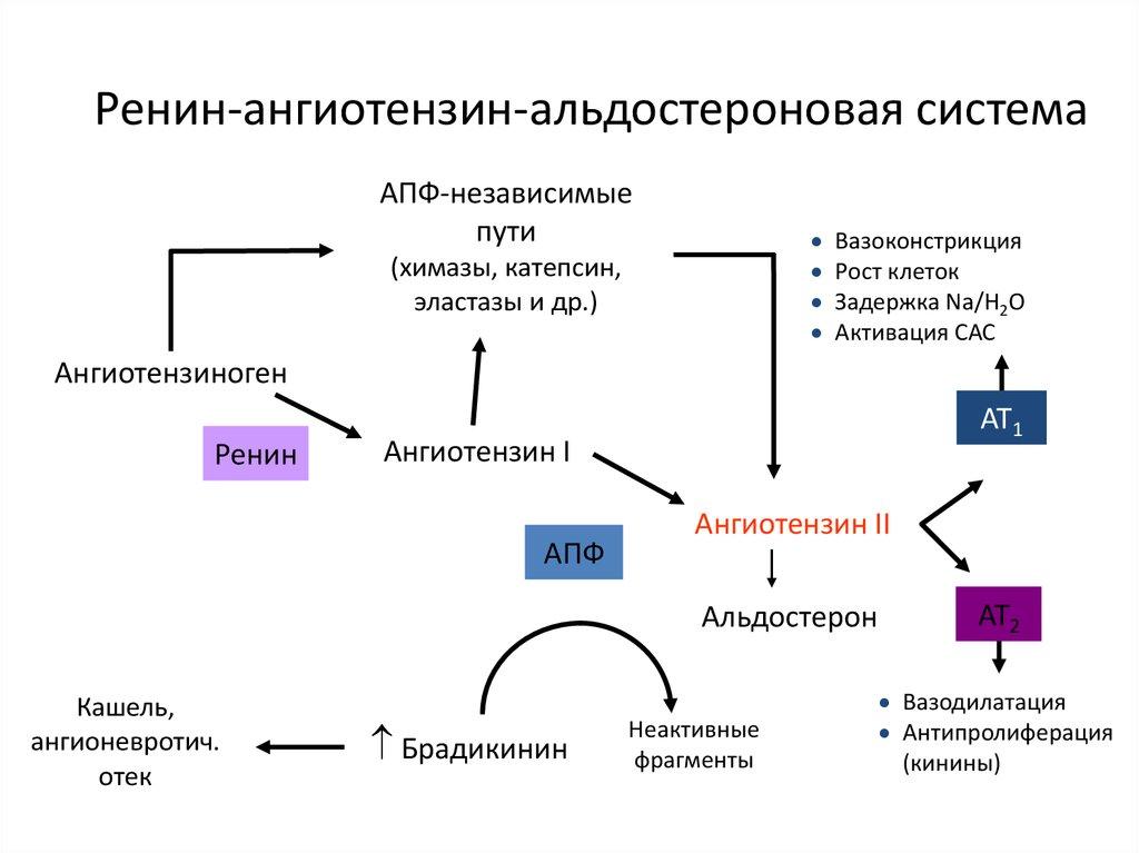 hipertónia dekompenzációja