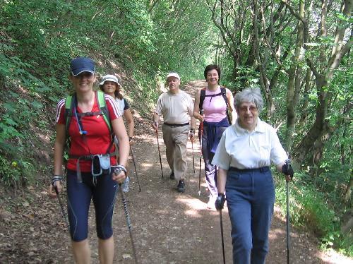 magas vérnyomás nordic walking hogyan kell enni magas vérnyomás esetén