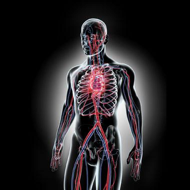 trombózis hipertónia fiatal korban magas vérnyomást okoz