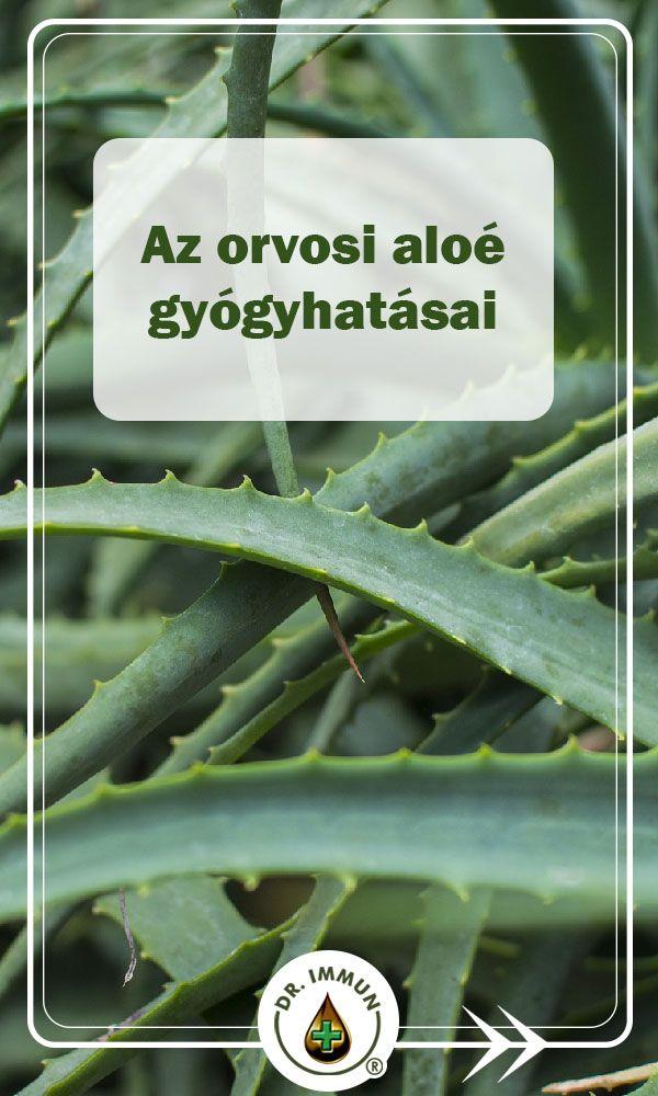 Aloe juice használata magas vérnyomás esetén