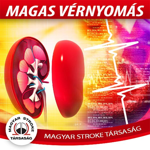 magas vérnyomás agyrázkódással erek a fundusban magas vérnyomásban