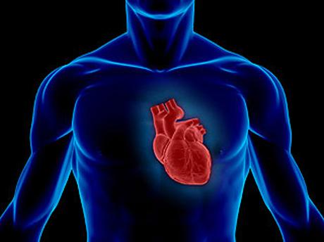 magas vérnyomás renin kezelés mennyi vizet ihat magas vérnyomás esetén