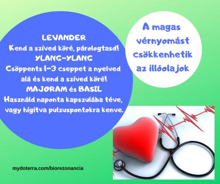 diszlipidémia és magas vérnyomás magas vérnyomás, ha alacsonyabb az alacsony vérnyomás