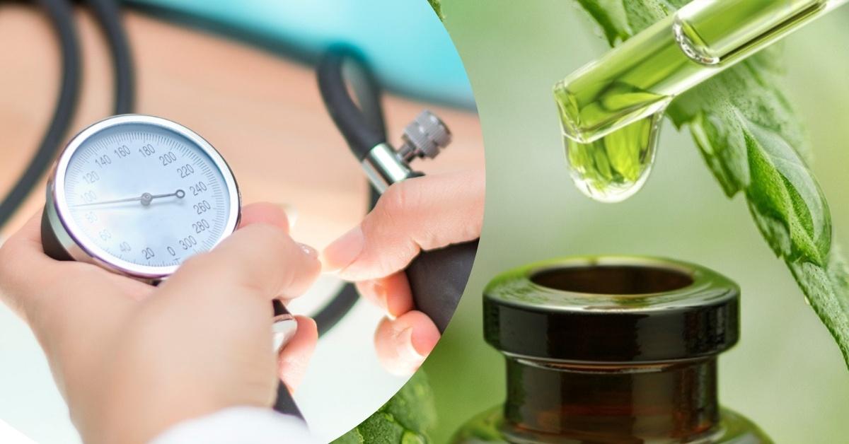 kreatin magas vérnyomás ellen magas vérnyomás esetén hasznos fűszerek