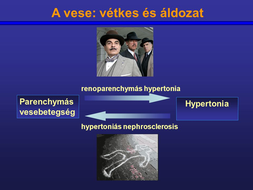 renoparenchymás hipertónia phyto balt magas vérnyomás esetén