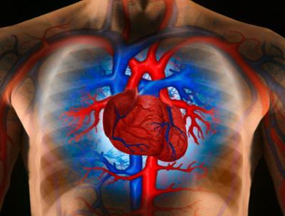 szünetet adott a magas vérnyomásért Magas vérnyomás kezelési folyóirat